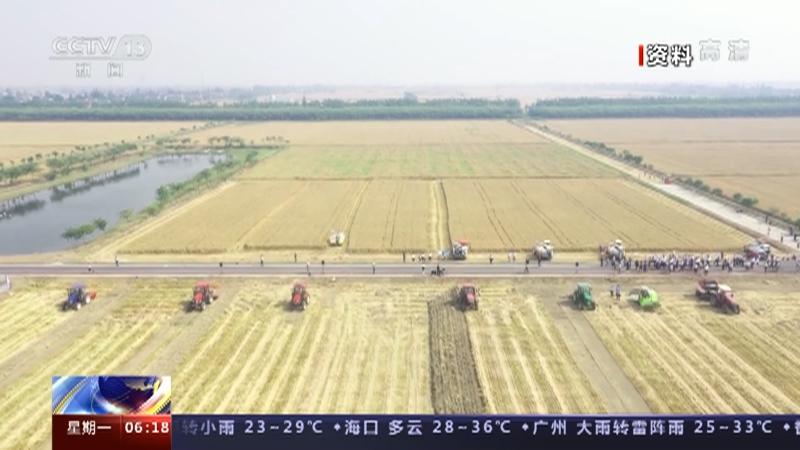 [朝闻天下]农业农村部多举措促夏粮稳产保丰收央视网2021年05月17日06:23