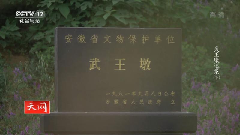 《天网》 20210810 武王墩迷案(下)