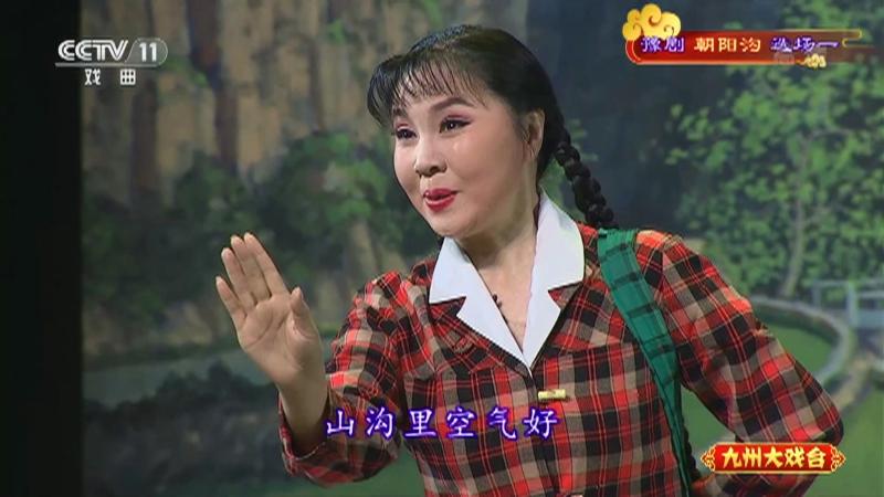 豫剧朝阳沟选场一 主演:杨红霞 盛红林 九州大戏台 20210818