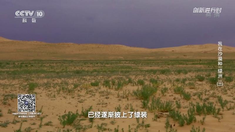"""《创新进行时》 20210828 我在沙漠种""""绿洲""""(三)"""