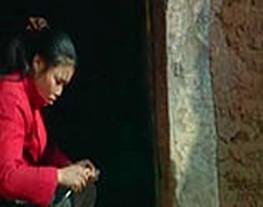王老汉和他的女儿们