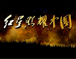 《红星照耀中国》