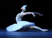 第三届北京国际芭蕾舞暨编舞比赛-国家大剧院芭蕾荟萃演出