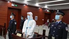 安徽省公安厅原副巡视员王辉一审获刑14年