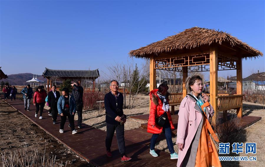 红旗村导游带领广东游客参观村容村貌(4月15日摄)。新华社记者 林宏 摄