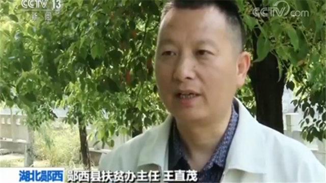 郧西县扶贫办主任王直茂