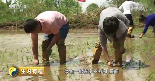 吉林柳河:农旅结合忙 全域旅游火