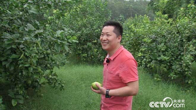 致富经:东北小伙闯广东 他让原本亏钱的果子变财富