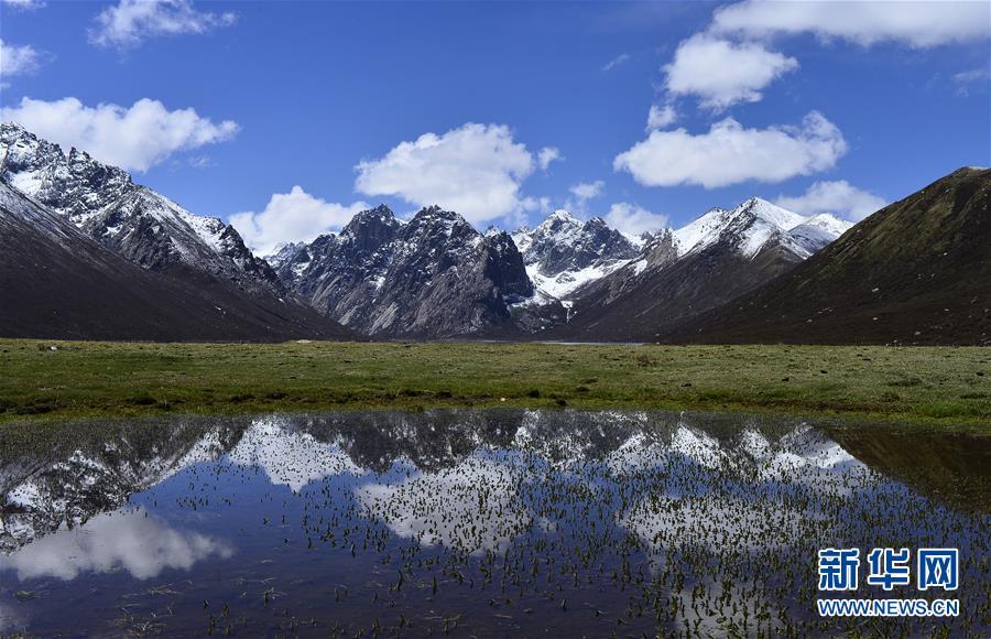 这是青海省果洛藏族自治州久治县境内的年保玉则风光(5月21日摄)。新华社记者 张宏祥 摄