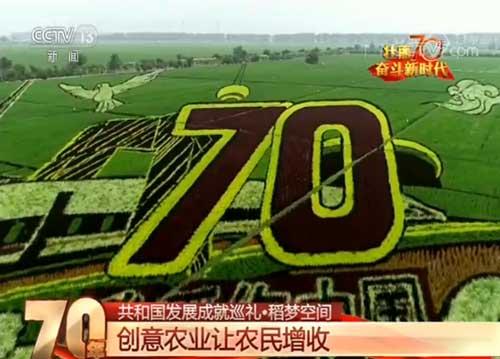 辽宁锡伯族镇:稻梦空间 创意农业让农民增收