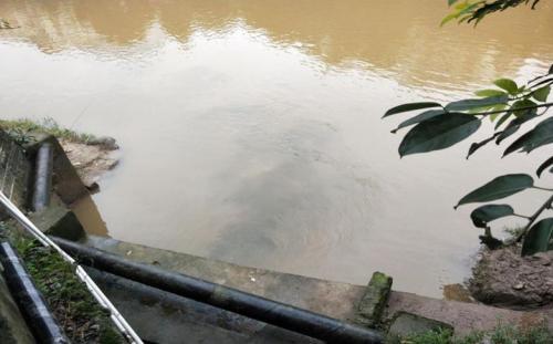 环保督察组:重庆大足区工作打折扣 玉滩湖水质不升反降