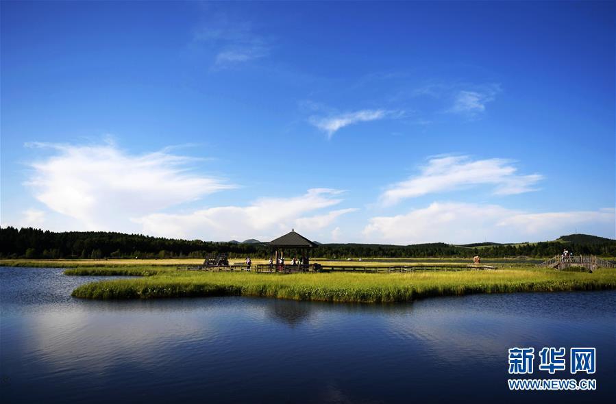 这是塞罕坝国家森林公园七星湖景区(2017年7月11日摄)。新华社记者 王晓 摄