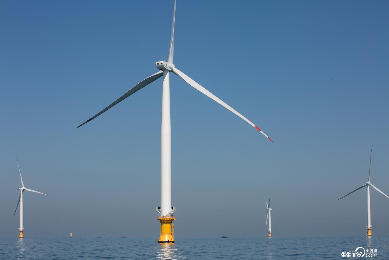 庄河海域海上风电项目近景(李文亮 摄)
