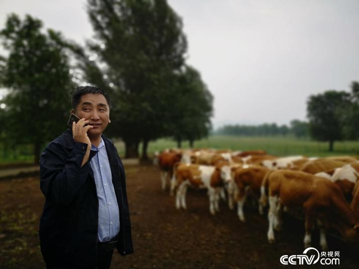 吴云波在幼牛培育基地打电话。(何川 摄)