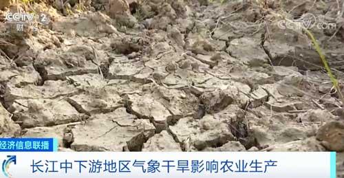 长江中下游地区气象干旱影响悦博娱乐生产