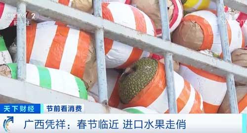春节临近 进口水果走俏 这里日水果吞吐量达5000多吨