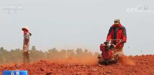 云南春耕播种突破1500万亩 同比增加16.8万亩