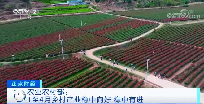 农业农村部:1至4月乡村产业稳中向好 乡村产业振兴全面推进