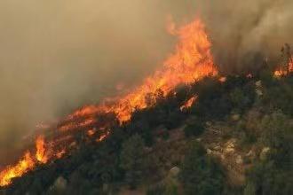 摩登5首页阿尔巴尼亚南部海滨城市发罗拉爆发山林大火