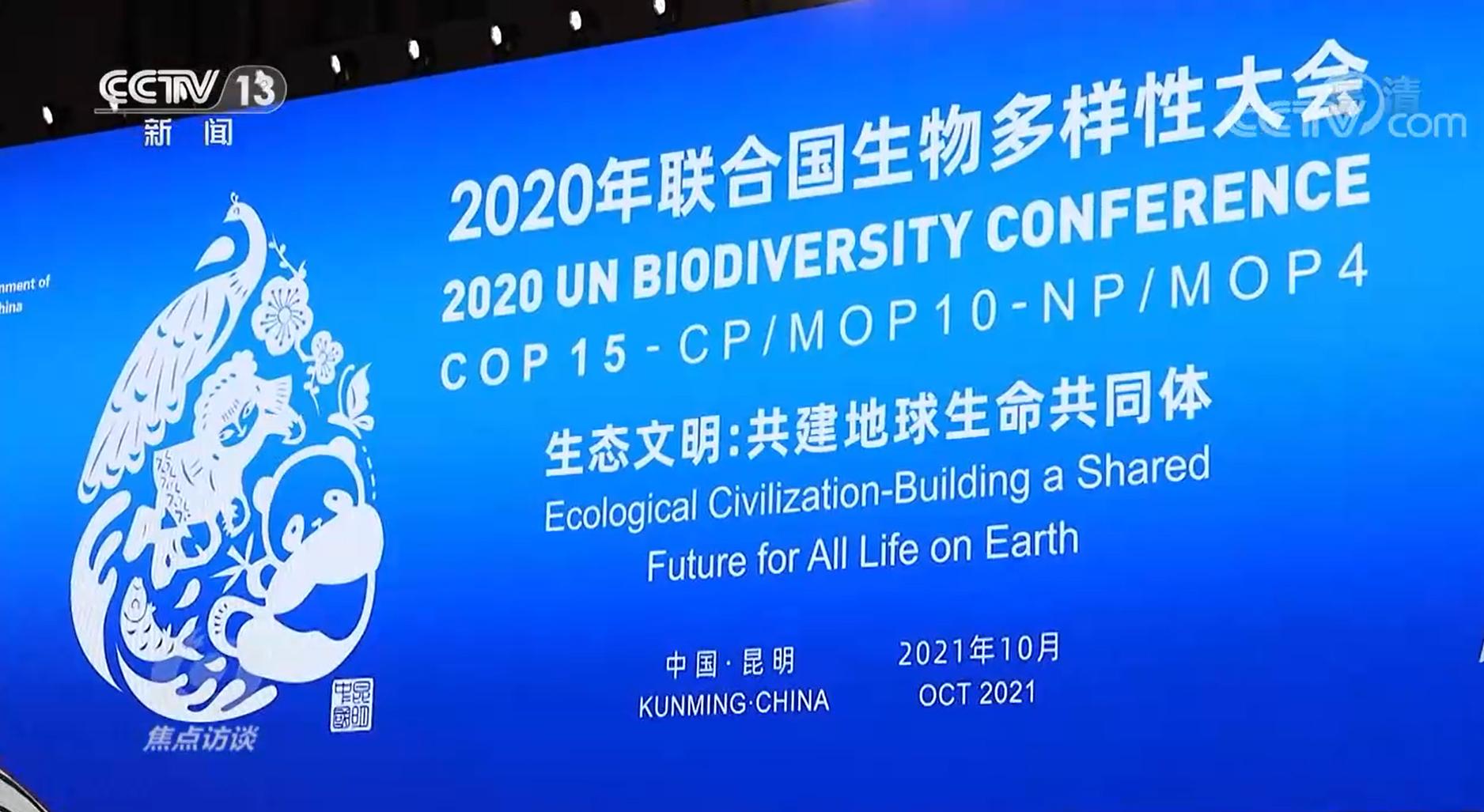 焦点访谈:COP15来了